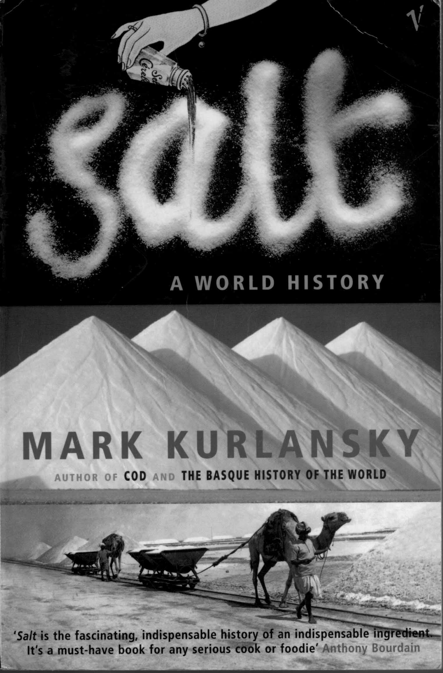 salt world history thesis 50 world history term paper topic ideas for college have you been assigned a world history topic for your college term paper here are 50 ideas to choose from.